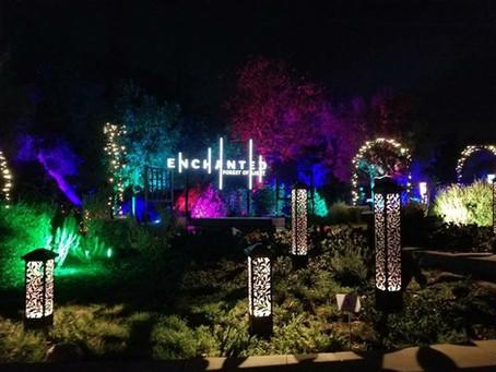Enchanted nights in Los Angeles