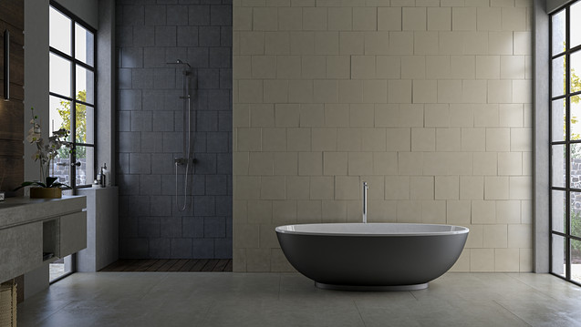 Bathroom Concept One Base Preview.jpg