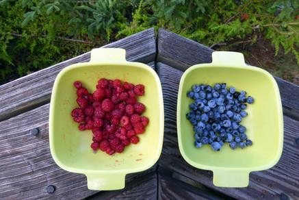 Freshly picked rasberries and blueberries