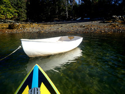 Returning from a morning paddle