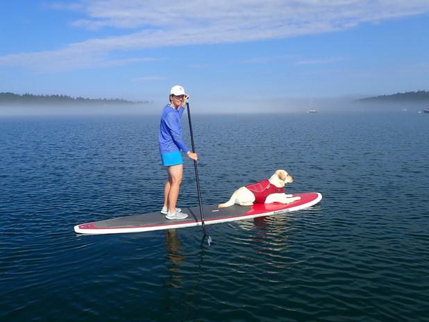 Happy dog and companion, Northwest Harbor