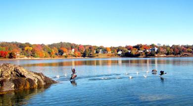 Town of Deer Isle in autumn