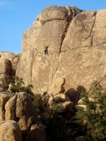Climber at Joshua Tree National Park