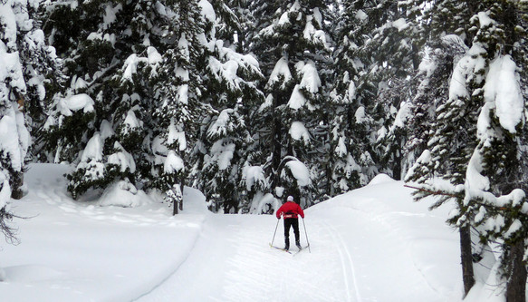 X-Country Skiing at Mt Bachelor Nordic Center