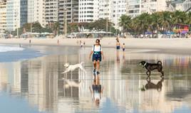 Walking Copacabana Beach with dogs