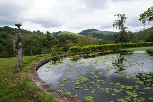 Pond, Fazenda Vista Alegre