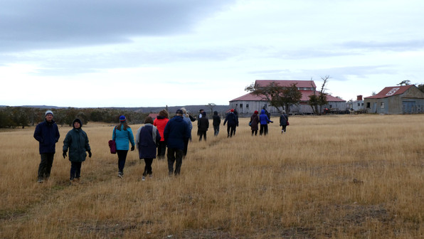 Heading toward the shearing shed