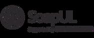 SoapUI-logo1.png