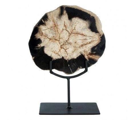 'Xylo' Petrified Wood Sculpture