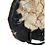 Thumbnail: 'Xylo' Petrified Wood Sculpture