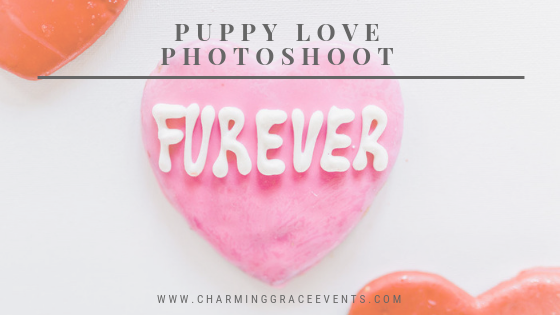 Puppy-Love-Photoshoot-Charming-Grace-Events-Annapolis-Baltimore-DC-East-Coast-Wedding-Planner