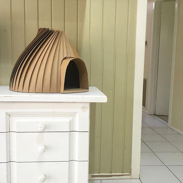 Cardboard Cubby Igloo Cat House