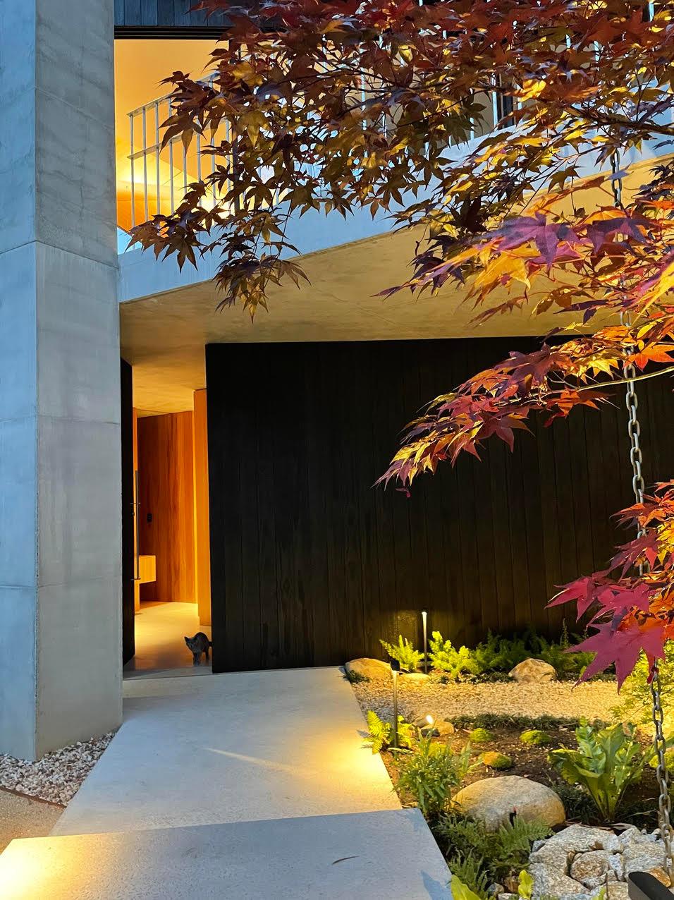 Japanese inspired native garden - Hawthorn