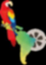 perroquet carte bobine.png