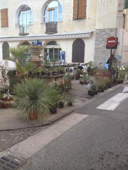 Foire d'automne Trans en Provence