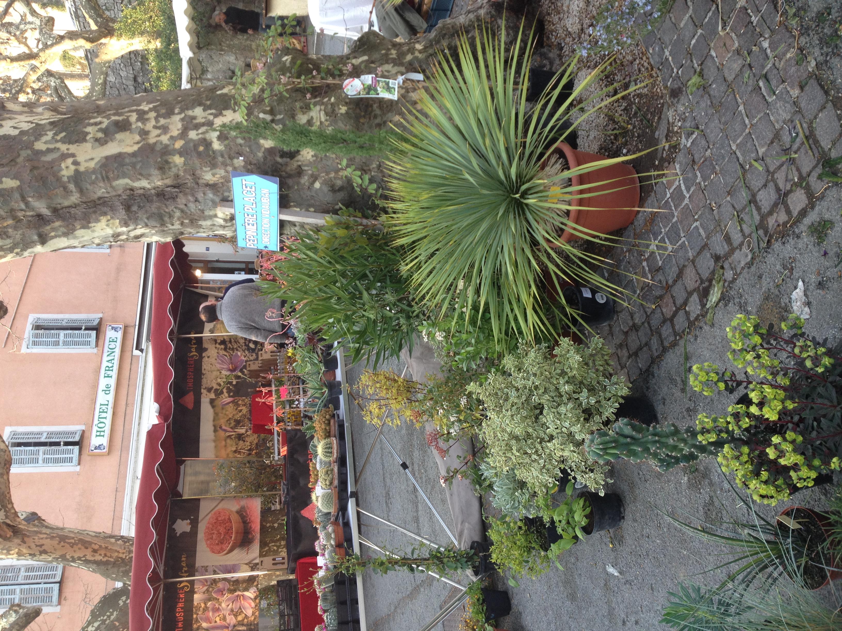 Fête des jardins - Callas 2018