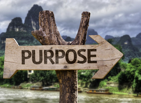 What's the purpose of purpose-driven business declarations?