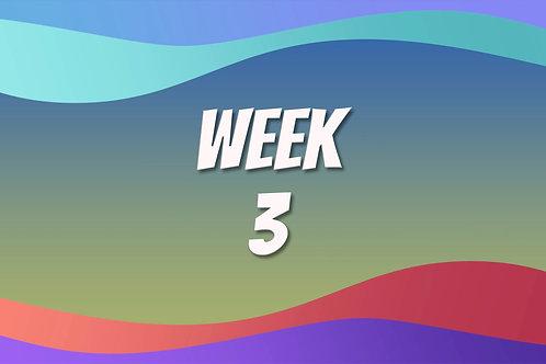 Video Course - Week 3