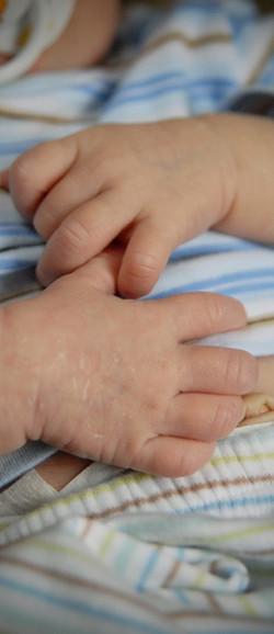 newborn hands