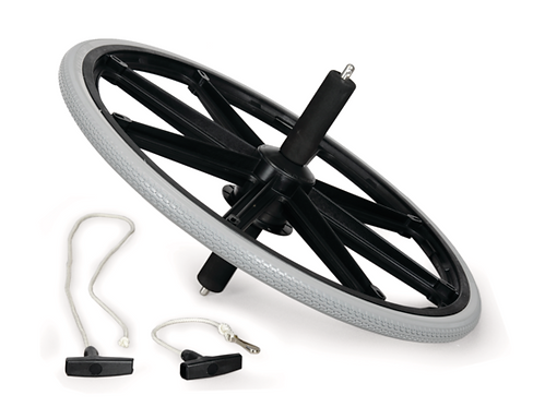 Bicycle Gyroscope (PS1044430)