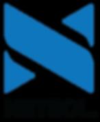 Netsol-logo_900w_transbkg.png