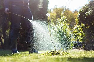 image_spray.jpg