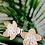 Thumbnail: Silver Flower Stud Earrings