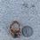 Thumbnail: Dumortierite Adjustable Ring
