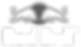 redbull associate logo.png