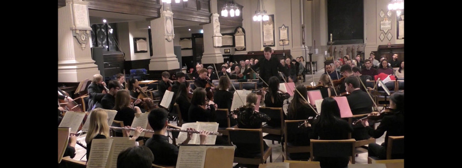 Brahms - Tragic Overture (Extract) with the Ripieno Players