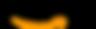 amazon logo - due bacchette per il successo - diego stacchiotti