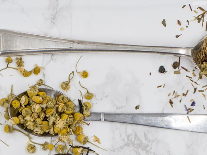 6 Herbs for Gas and Bloating