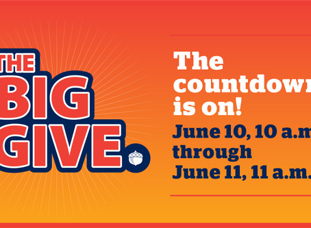 The Big Give is Coming June 10-11!