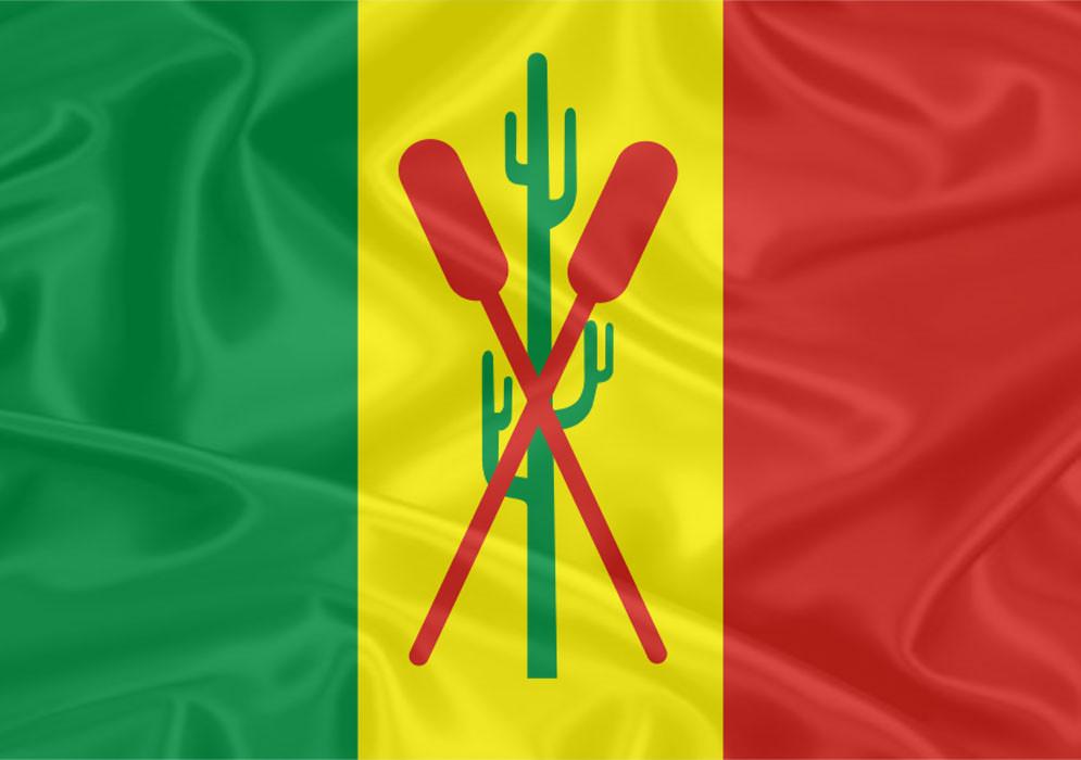 Bandeira do Estado do Amazonas