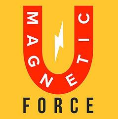MAGNETIC FORCE, LLC