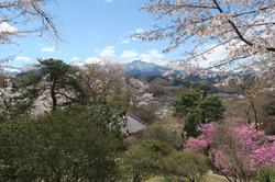 IMG_8274稲含山・4月