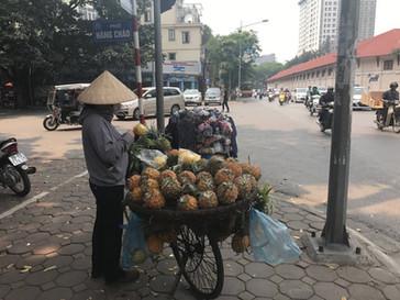 Le Vietnam à 1000 à l'heure!