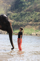 Notre expérience avec les éléphants en Thaïlande