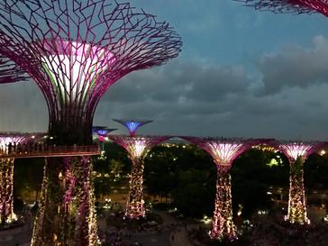 L'Unique et bouillonnante Singapour