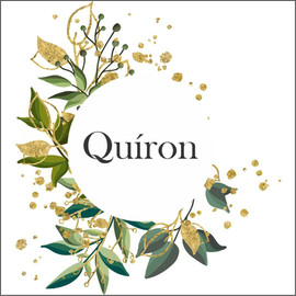 Logo Quiron.jpeg