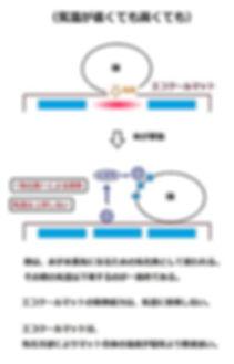 吸熱と除熱_ECマット3B.jpg