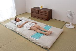 エコクールマットは、水の気化熱を利用した冷却マットです。夏の夜の寝具として、疲れた足の冷湿布として、どうぞ。30℃の室内で9時間後も冷却能力があります。