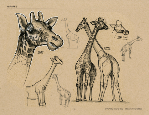 dynamic sketch_Page_31.png