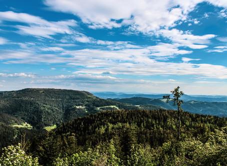 Schwarzwald-Tour 05/2020