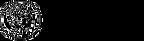 Timothy Initiative Logo  - transparent.p