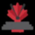 World Ringette Championship Logo.png
