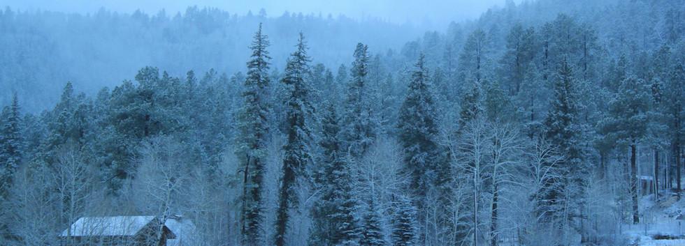 Snowy Bliss web.jpg
