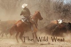 The Wild West Lisa Wood