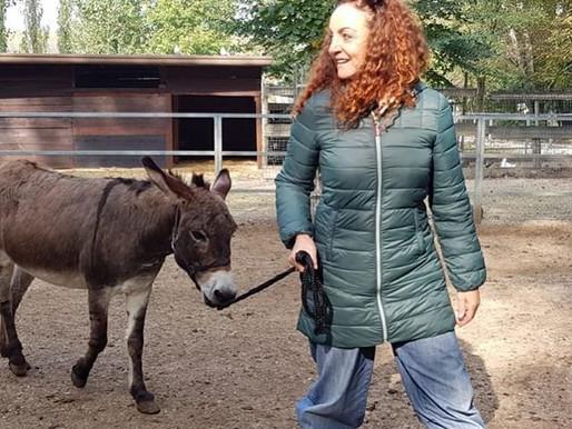 Conoscere gli animali partendo dall'educazione dei bambini,cos'è la zooantropologia didattica.