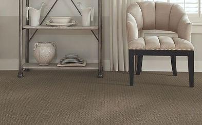 Style Shaw E0177 Artful Details Carpet Fiber 100 Anso Caress Nylon 43 9 Oz